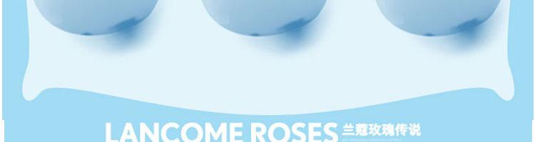 兰蔻玫瑰矢量图