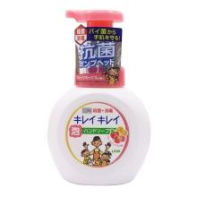 日本进口LION狮王植物洁净泡沫洗手液250ml 混合水果香型