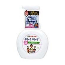 LION 狮王泡沫洗手液250ml(保税仓发货)